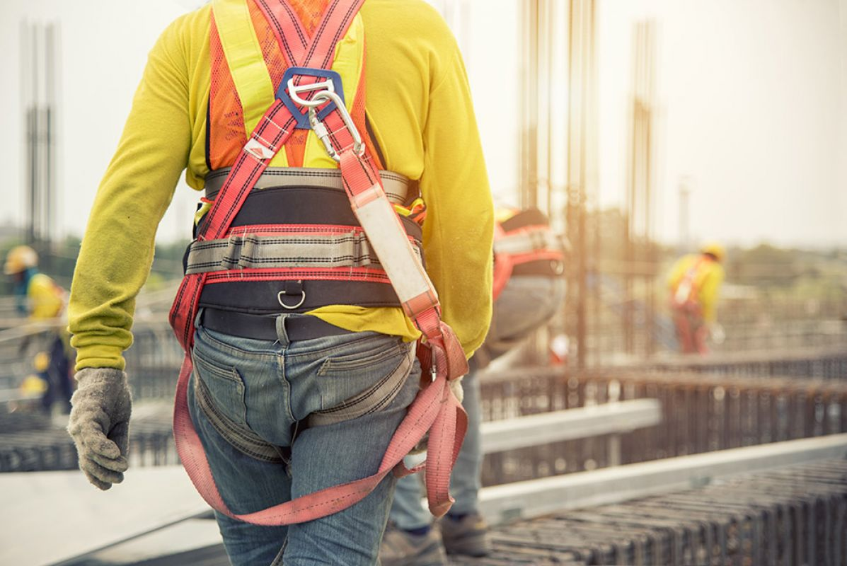 Image of the Safety Harness